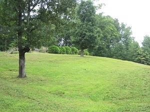 Sold! Airport Rd., Wmsburg | Nice building lot with septic & water on site. $11,500