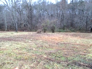 789 Henry Barton Rd | 6.14 acres +- of level to rolling land with a septic system installed $22,500