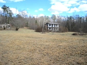 Large tract of land consisting of 145 acres+-, some cleared but mostly forested, that borders Cumberland River.  FREE GAS $148,000