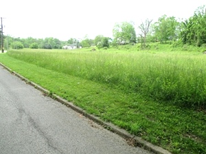 2nd St., Wmsbg |  This land is virtually level and could be used for public or private use and is a great location for a house.