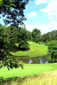Golf Course! The equipment you need and a perpetual lease on 100 +/- acre 9 hole golf course.
