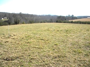 Sold! 2266 Blake's Fork, W-burg | 14 acres conveniently located near I-75 at Goldbug | house & barn & extra septic system  $99,900
