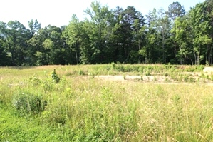 SOLD! Buc Rd., Wmsbg.| 2.3 acre lot on Buc Rd. just outside the City limits of Williamsburg.