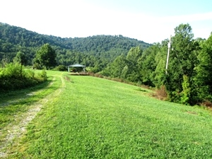 Sold! 1026 Brown's Ck. Rd., Wmsbg    40 acres w/a nice house site, well and septic already on site.