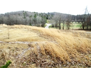 Sold! Log Cabin Rd. Looking for a place to build or place your home? Look no more! This .79 acre lot