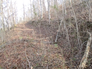Sold! 1111 Jr. Rowland Rd   45 Acres +/- located close to exit 15 at Goldbug and both Williamsburg and Corbin.