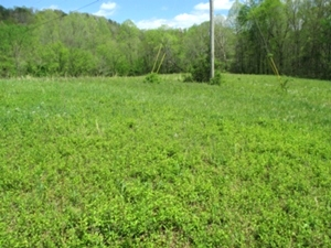 SOLD 2200 Croley Bend Rd, Wmsbg |  Six vacant lots for sale located at 2200 Croley Bend Rd.