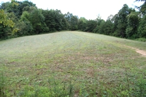 Sold   JUNCTION OF TYE'S FERRY RD. & JACK'S FORK 63.551 surveyed acres