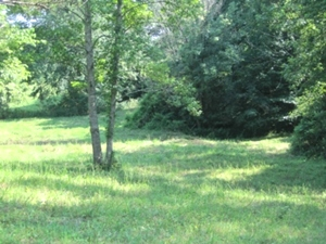 Sold! Logan Rd.  Your farm and home can be located on this 12 acres in a nice rural community.
