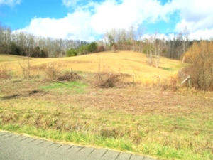 34.25 acres +/- located on Hwy 779 near Clark's Grocery.  Property is a combination of level, slightly rolling, w/hills